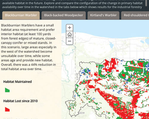 Examine how landscapes and bird habitat in N. WI and Upper MI may change under varying management scenarios my team modelled with The Nature Conservancy.